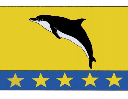 flag-nebug